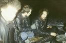 Fet 1991